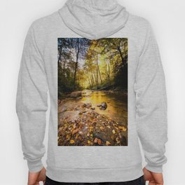 Below The Falls Hoody