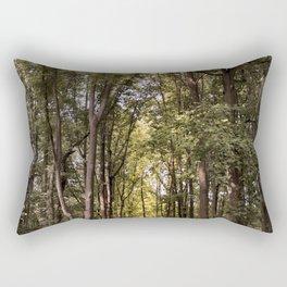 Light Tunnel Rectangular Pillow
