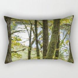 Canal Through the Trees Rectangular Pillow