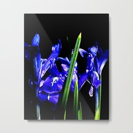 Among the Ladies Artist Series jGibney Irises Metal Print