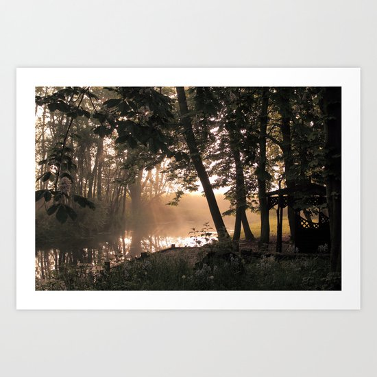 Morning Glade Art Print