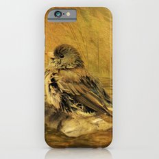 The Bathing Junco iPhone 6s Slim Case