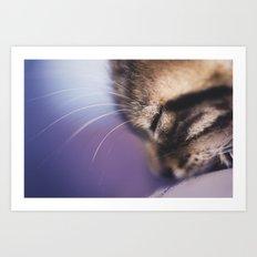 Purple Bibou Art Print