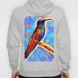 The HummingBird Hoody