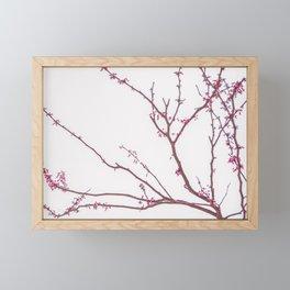 Nature photography pink blossom I Framed Mini Art Print