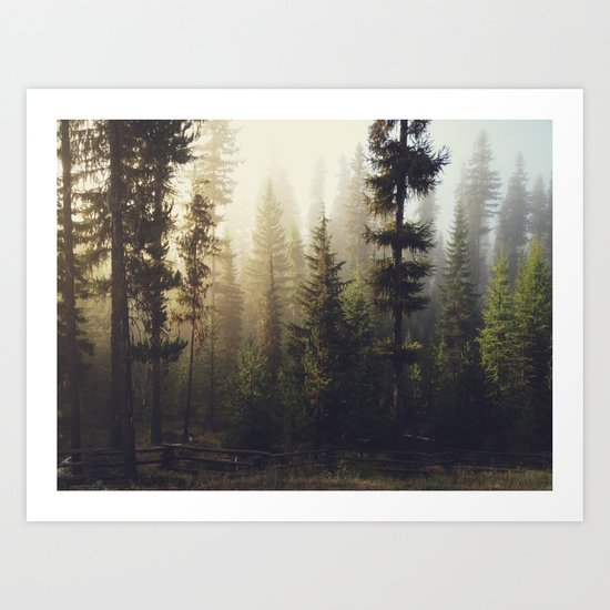 Sunrise Forest Art Print