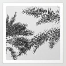 simply palm leaves Art Print