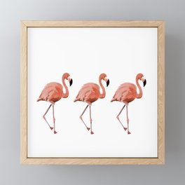 A Flamboyance of Flamingoes - Flamenco - 57 Montgomery Ave Framed Mini Art Print