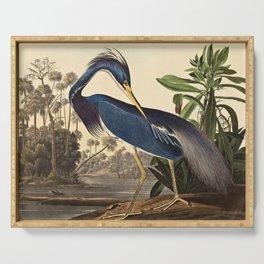 John James Audubon - Louisiana Heron Serving Tray