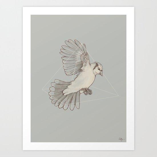 Dynamics of Flight Art Print
