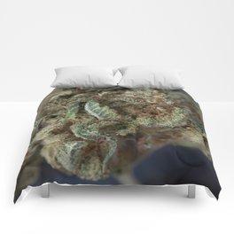 Close up of Deep Sleep Medicinal Medical Marijuana Comforters