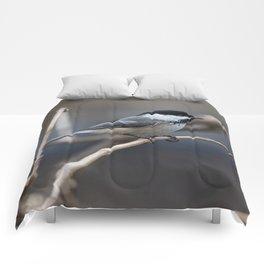 Chickadee Comforters