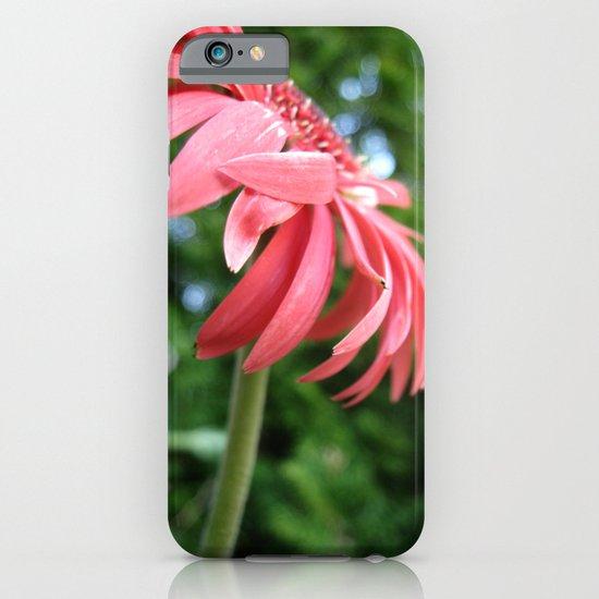 Red in Focus iPhone & iPod Case