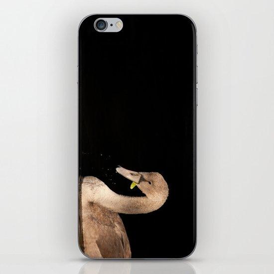 Young Swan iPhone & iPod Skin
