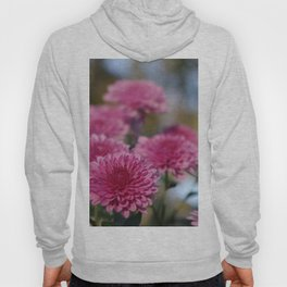 Rosy Chrysanthemum with gold leaves, blue sky Hoody