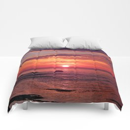 The Flamboyant One Comforters