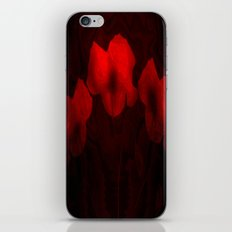 Poppies aglow iPhone & iPod Skin