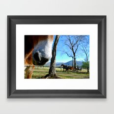 Tennessee nose Framed Art Print