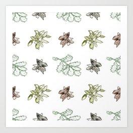 Quercus (greens) Art Print