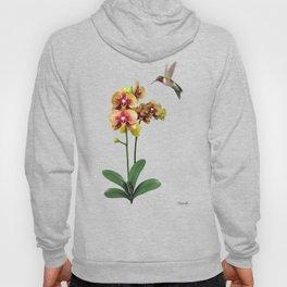 Hummingbird & Phalaenopsis Hoody