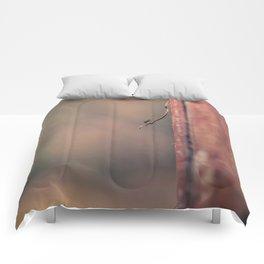 The balance Comforters