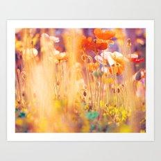 I am Alice. poppy flowers photograph Art Print