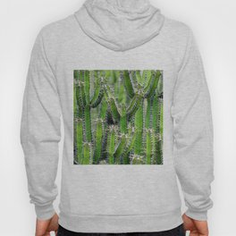 cactus illusion 4 Hoody