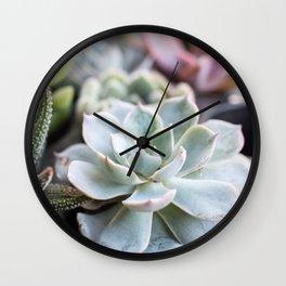 Pastel Succulents Natural Beauty Wall Clock