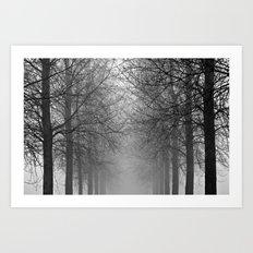 Mist Trees Art Print