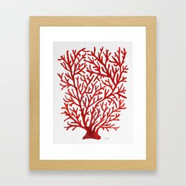 Red Coral Framed Art Print