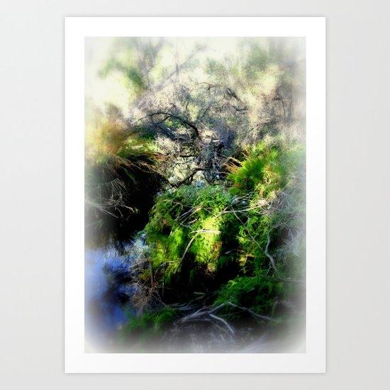 Billabong Art Print