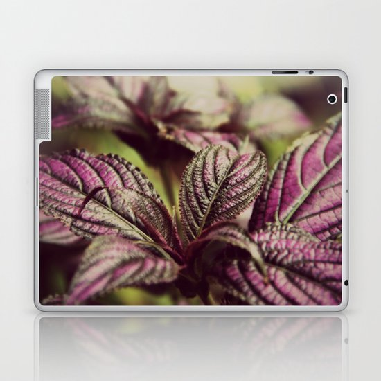 Dusk Fen Shui Laptop & iPad Skin