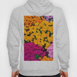 Joy And Beauty Hoody