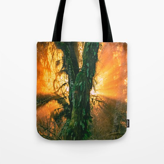Forest Trees in the Hoh Rainforest - Travel Sunset Forest Nature Trees sun green hiking adventure Tote Bag