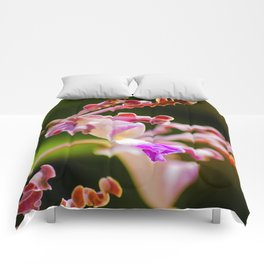 Macro Nature Photography: Abstract Alien Orchid Comforters