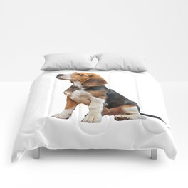 Drawing puppy Beagle Comforters