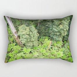 Ferns From Above Rectangular Pillow