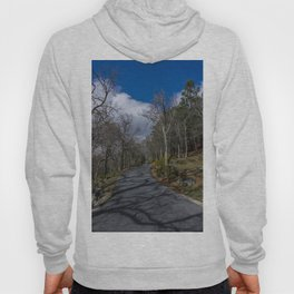 Tree Shadow Hoody