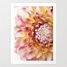 Dalia Detials Art Print
