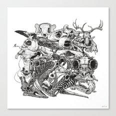 Animal Skulls Canvas Print