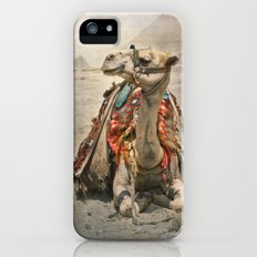 Camel at Giza Slim Case iPhone (5, 5s)