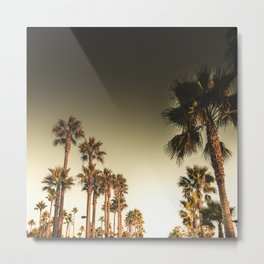 los angeles palms Metal Print