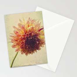 Small Grandness Stationery Cards