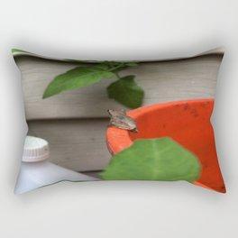 Little Frog Looks Away Rectangular Pillow