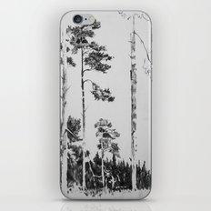 Birch  iPhone & iPod Skin