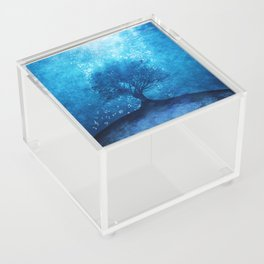 Songs from the sea. Acrylic Box