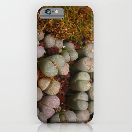Cactus Stones iPhone & iPod Case