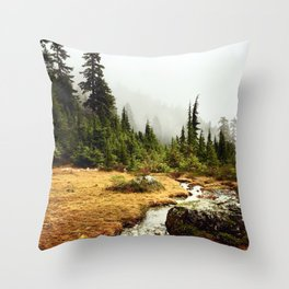Mt Seymour forest and river views Throw Pillow