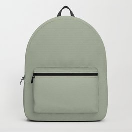 Soft Pastel Sage Green Gray Solid Color Pairs To Behr's 2021 Trending Color Jojoba N390-3 Backpack