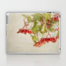 autumn's glow Laptop & iPad Skin